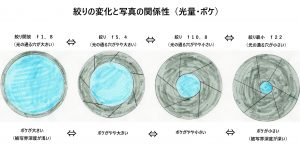 絞りの変化と写真の関係(光量・ボケ)